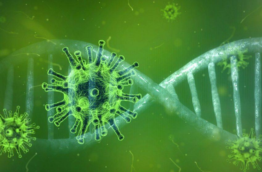 Primeiro caso do novo coronavírus em São Gonçalo do Amarante