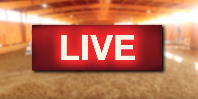 Confira a programação de lives deste domingo (03)