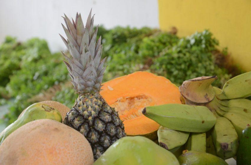 Prefeitura já distribuiu mais de 250 toneladas de alimentos em 2021