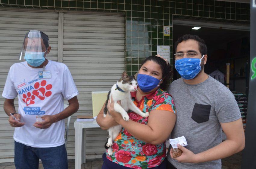 Antirrábica: São Gonçalo terá pontos de vacinação neste sábado (18)